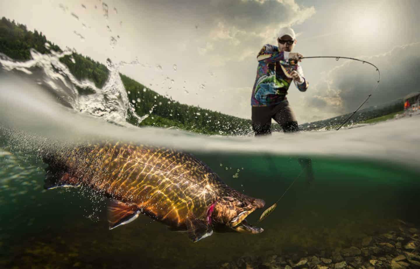 fisherman catching big fish underwater view